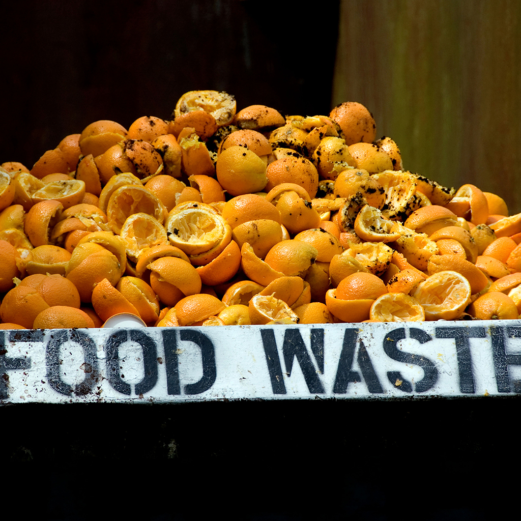 FWX TRANSFORMING FOOD WASTE INTO ENERGY
