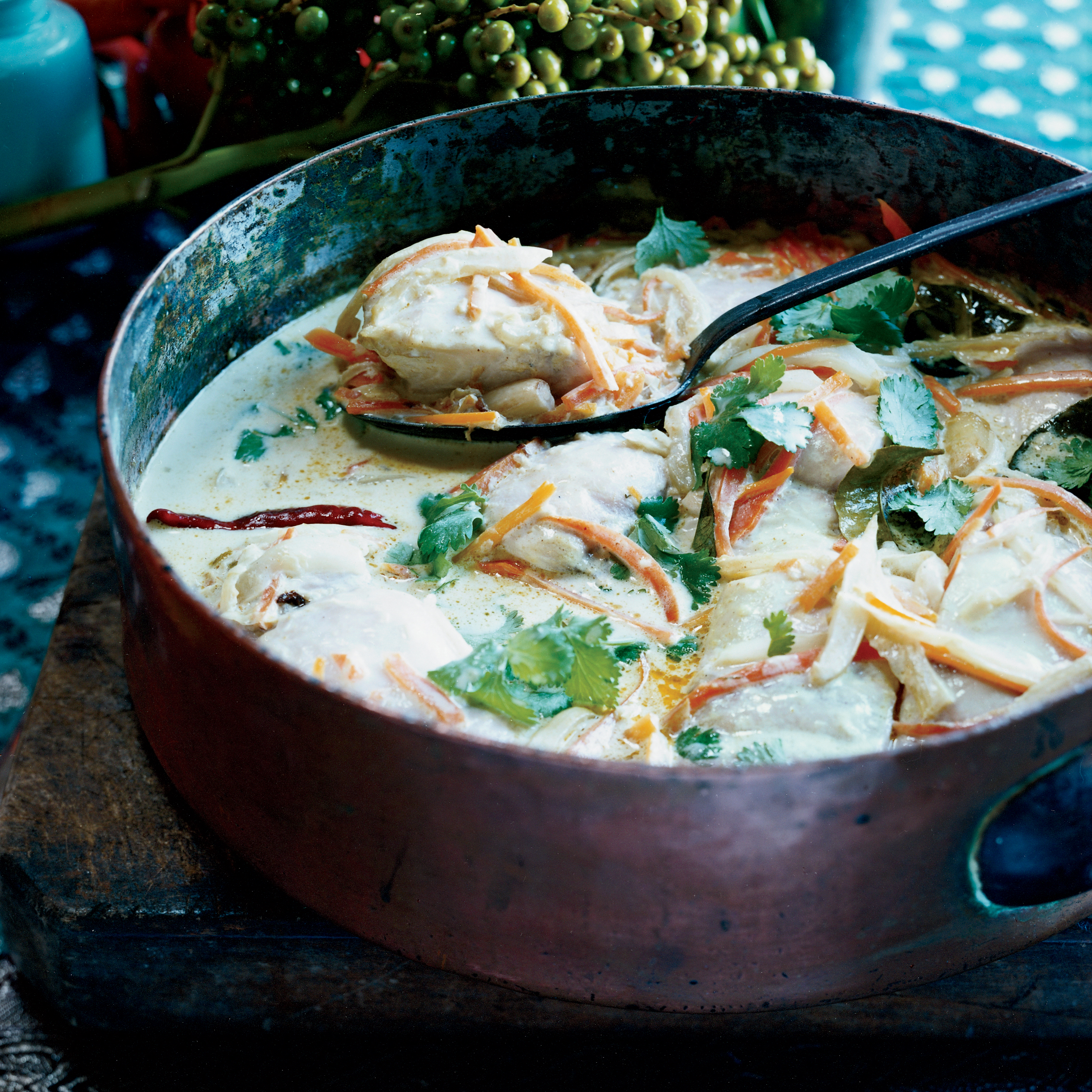 Mahimahi Coconut Curry Stew with Carrots and Fennel Recipe - Padma ...