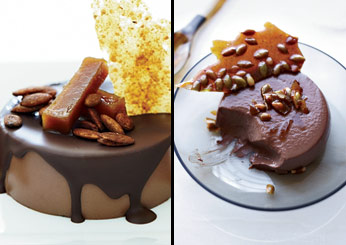 Chocolate Panna Cotta with Spiced Pepita Brittle