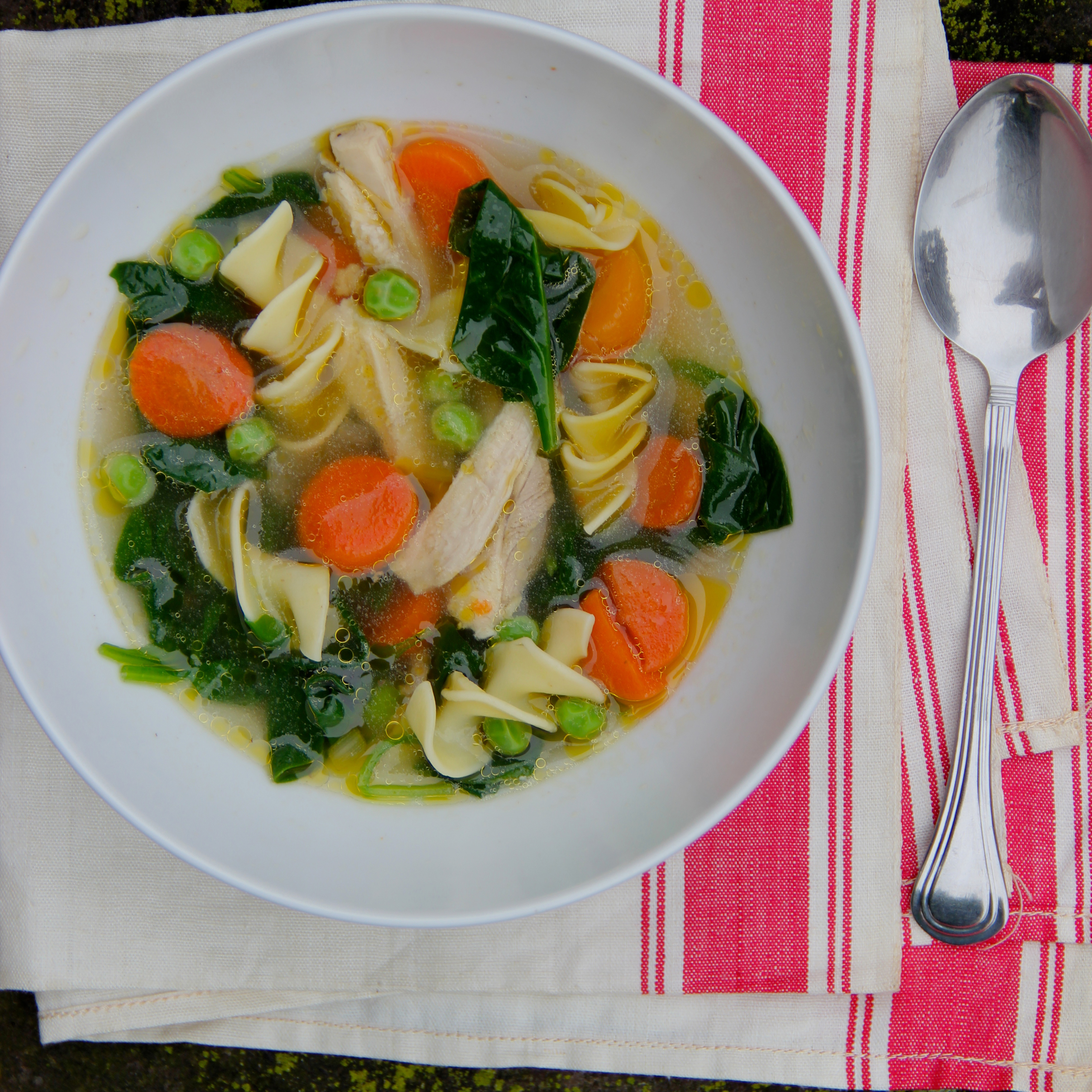 Chicken and vegetable noodle soup recipe ian knauer for What vegetables to put in chicken noodle soup
