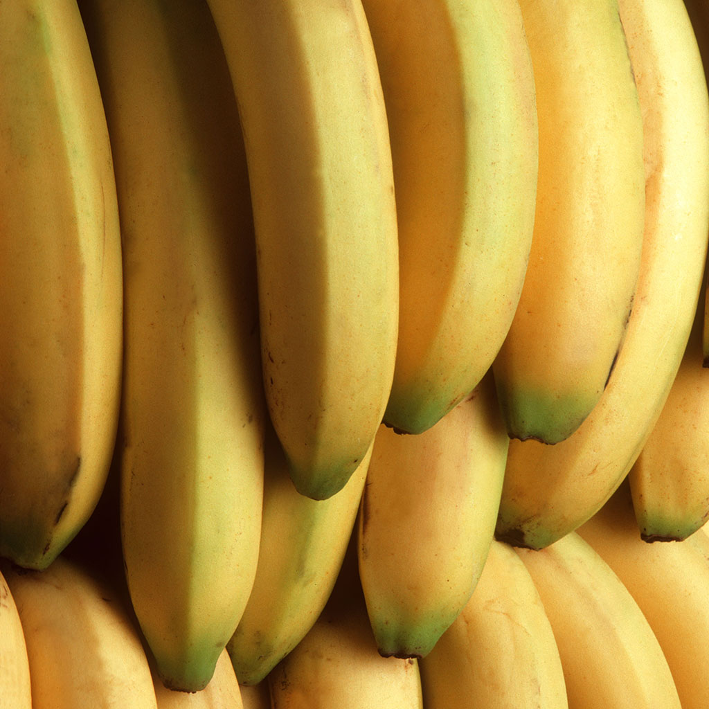 FWX BANANAS IN DANGER OF GOING EXTINCT