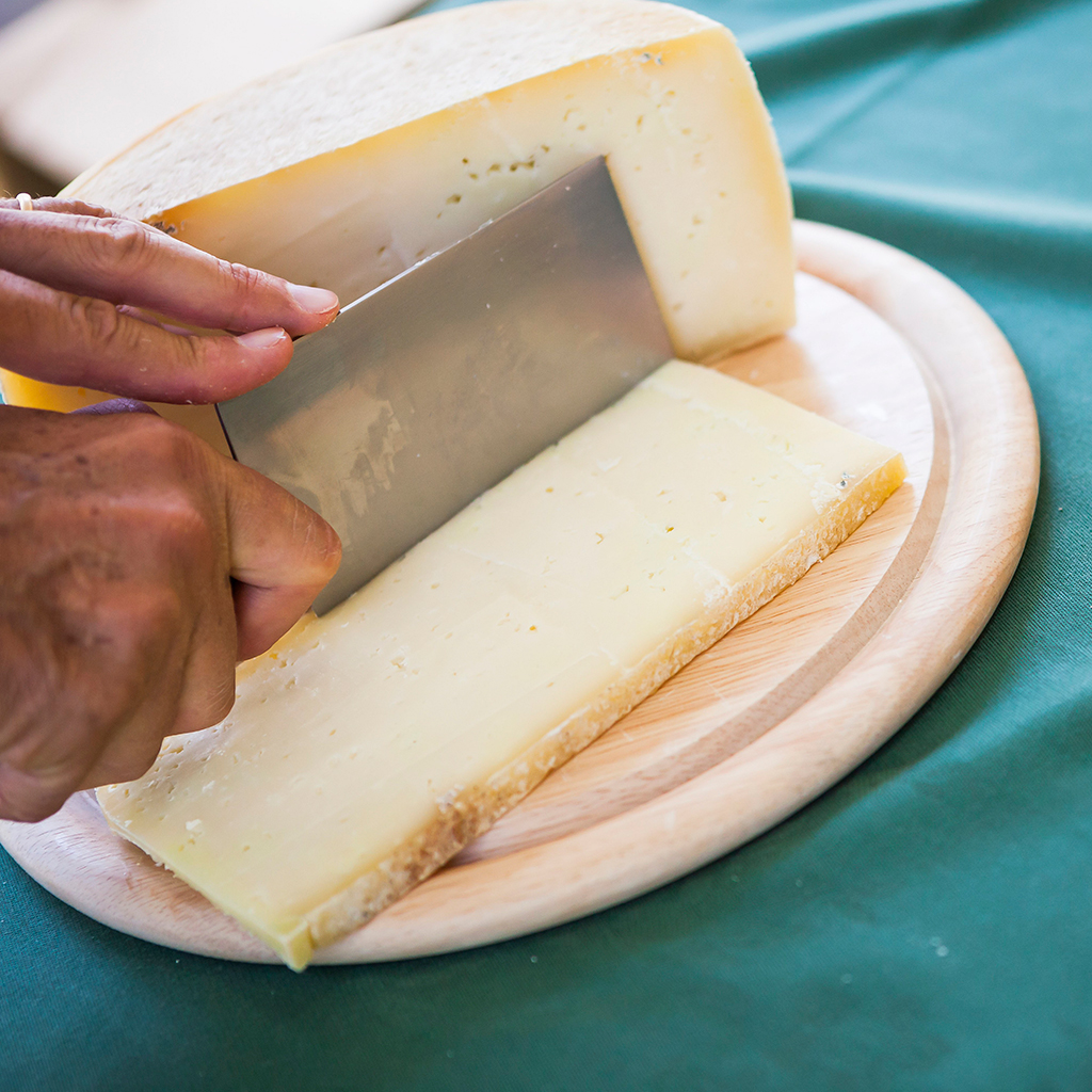 FWX PIG CHEESE