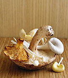 images-sys-fw200410_032.jpg