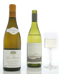 Old World and New World Sauvignon Blancs. Photo © Terry Monk.
