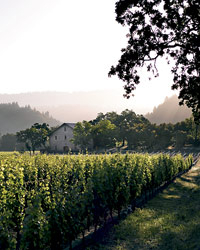 Profits from Napa's Ehlers Estate go toward supporting heart research. Photo courtesy of Ehlers.