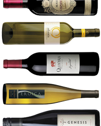 25 Best Wines for Summer