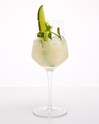 Cucumber-Mint Cooler