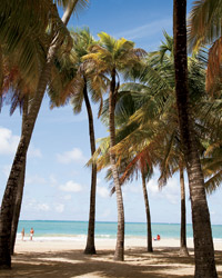 Where to go in Puerto Rico