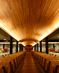 Chilean Wine Producers We Love