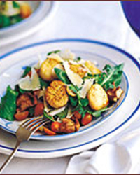 Fennel, Mushroom and Arugula Salad with Seared Scallops
