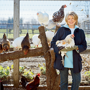 Emeril Lagasse Interviews Martha Stewart on Raising Chickens