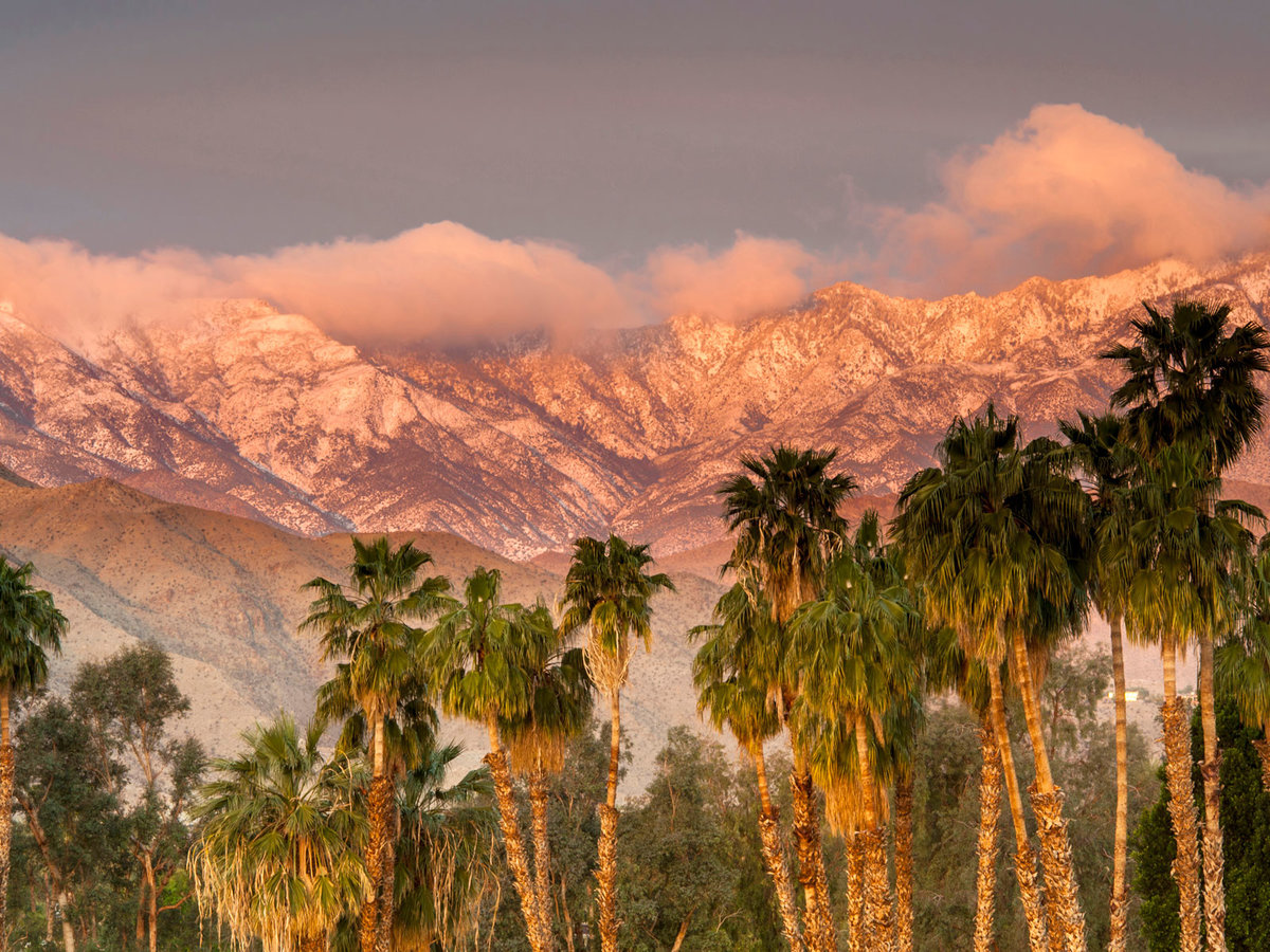 The Five Palm Springs Restaurants You Need to Try