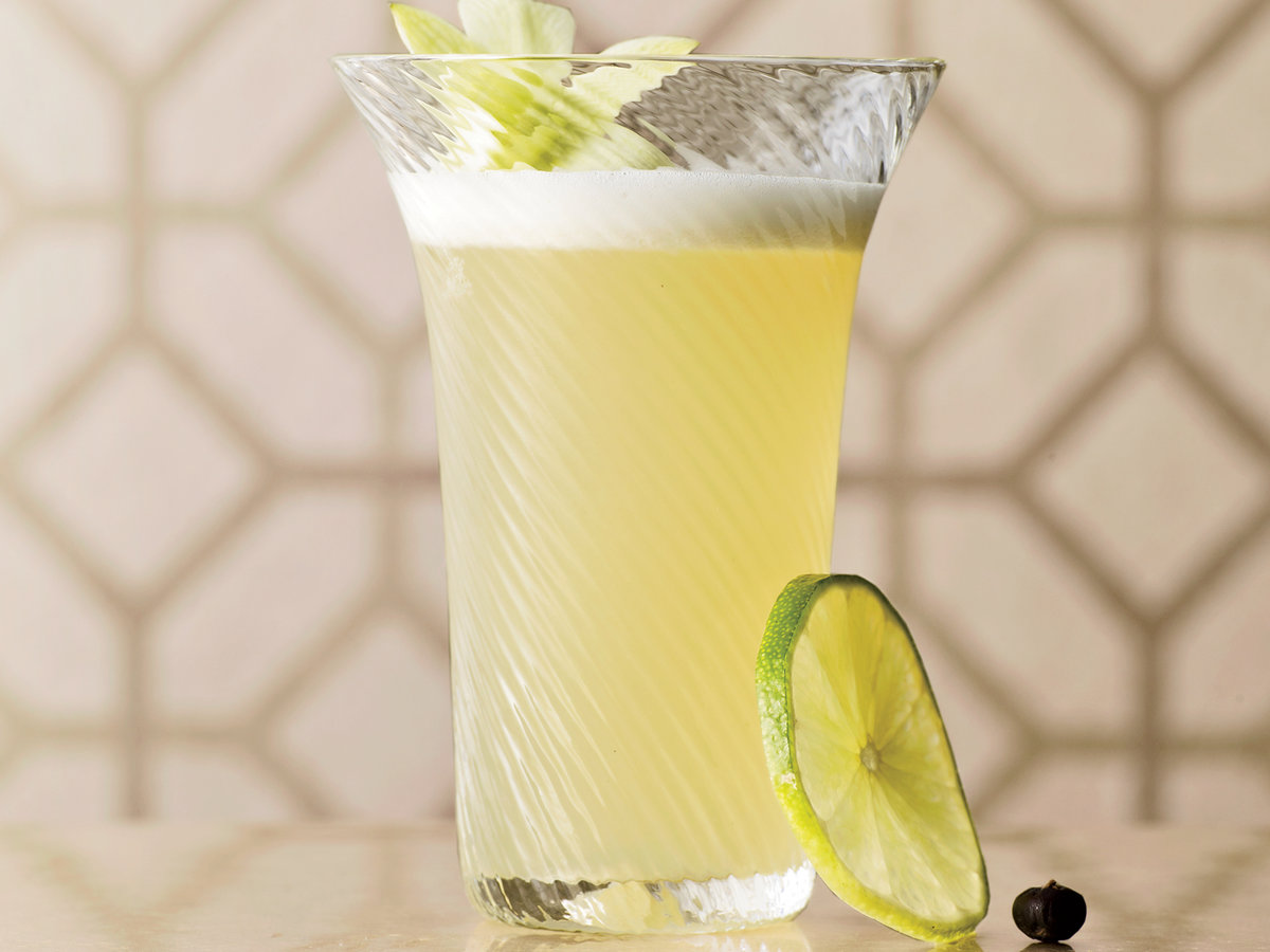 2011-cocktails-juniper-tea-fizz1.jpg