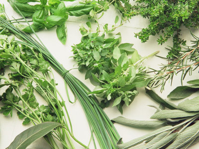 Fast Herb Fixes