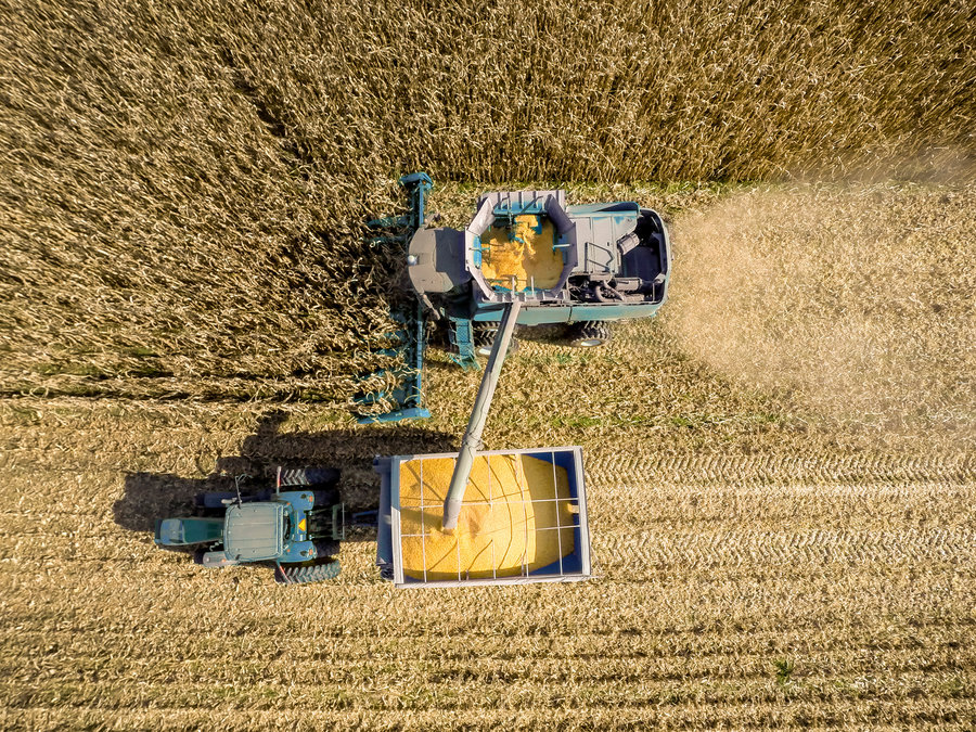 Subsidized Crops Less Healthy Americans