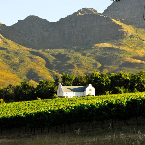 Dornier Wines; South Africa