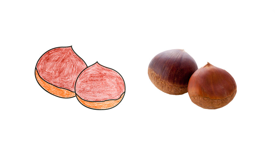 <strong>Chestnut</strong>