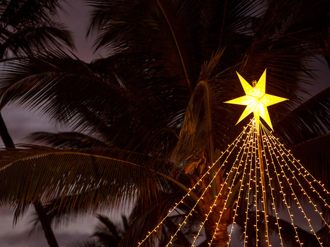 hawaii christmas decor