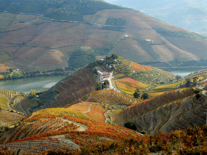 Quinta do Crasto: Douro Valley, Portugal