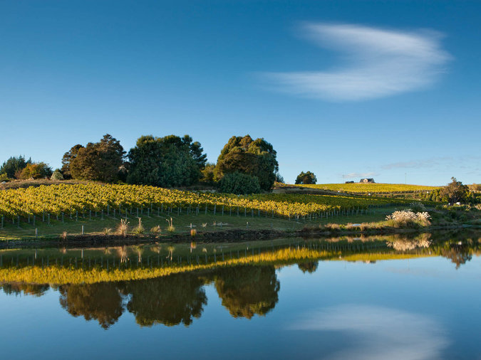 Sustainable Wines and Spirits New Zealand Winegrowers