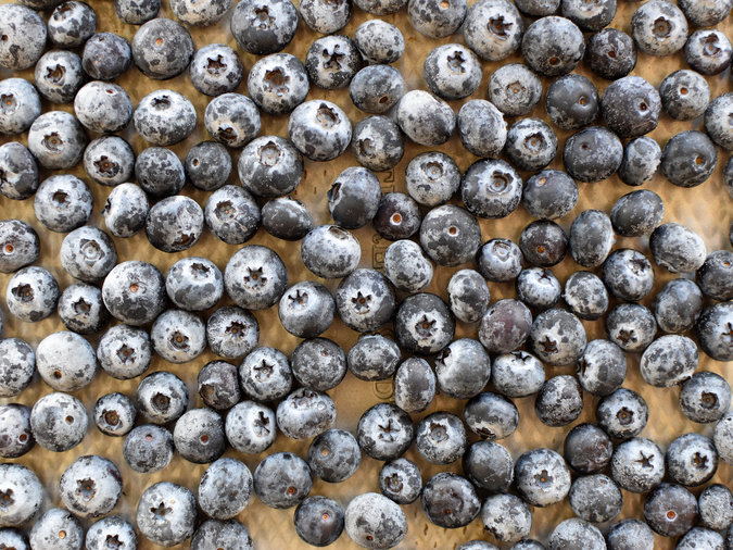 What to Do With Frozen (or Thawed) Blueberries