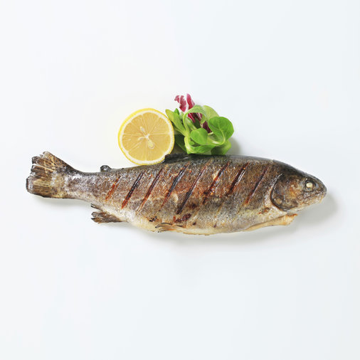 grilled-trout