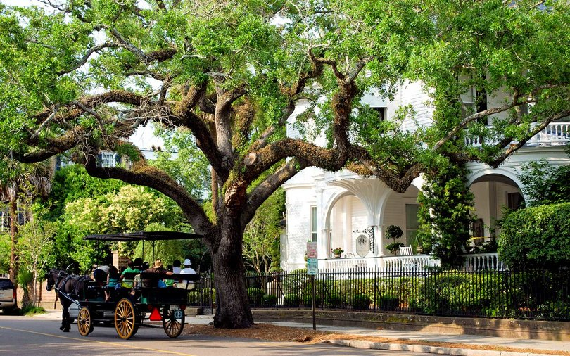 Carriage Ride, Charleston, South Carolina