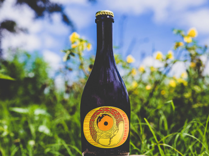 Aurelian Lure by Jester King Brewery