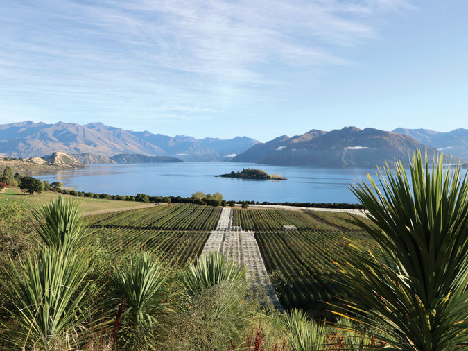 Rippon Winery: Central Otago, NZ