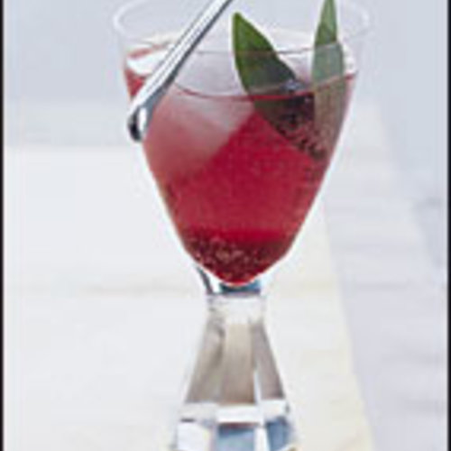 Plum Blueberry Spritzers