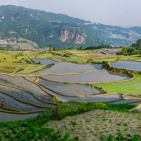 Food & Wine: Could Yunnan Province Be the Next Big Wine Region?