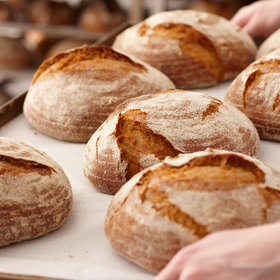 Food & Wine: Scientists Claim to Have Created Gluten-Free Bread That Tastes Just Like the Real Thing