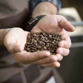 Food & Wine: Some Coffee Beans on the Market Could Be 9 Years Old