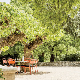 Food & Wine: What to Do in Provence, France