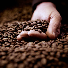 Food & Wine: A Crash Course on Coffee Beans from 'How to Make Everything'
