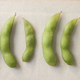 Food & Wine: Edamame Is the Latest Food to Fall Victim to Listeria Contamination