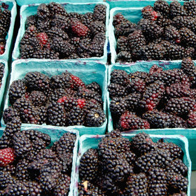 Food & Wine: The Difference Between Blackberries & Marionberries