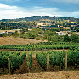 Food & Wine: Where to Drink and Eat in the Willamette Valley