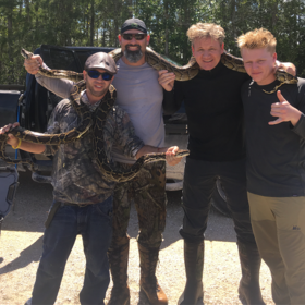 Food & Wine: Gordon Ramsay Spotted Hunting Python in Florida