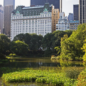 Food & Wine: 12 Shocking Things I Learned by Working as a Butler at the Plaza Hotel