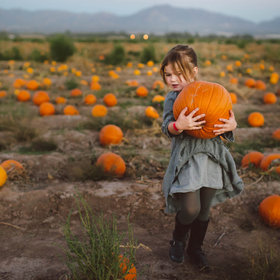 Food & Wine: Here's Just How Crazy People Are for Pumpkin