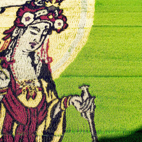 Food & Wine: Check Out This Absolutely Stunning Rice Paddy Art