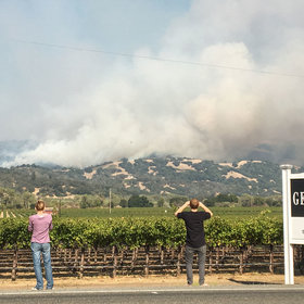 Food & Wine: Why the Wineries Affected by the Wildfires in Napa Will be Fine