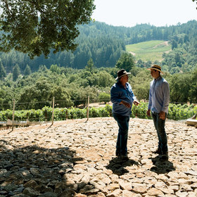 Food & Wine: Home for the Holidays at a Napa Valley Winery