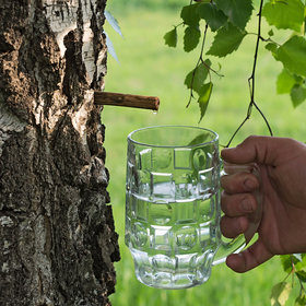 mkgalleryamp; Wine: Would You Drink Organic Tree Water?