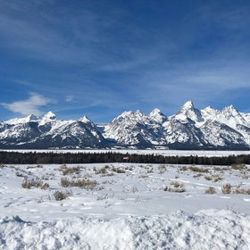 Food & Wine: 100 Hours in Jackson, Wyoming: Where to Eat, Drink and Play Like a Local