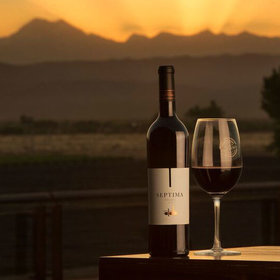 Food & Wine: 25 Bottles of Argentine Malbec to Drink Right Now