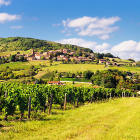 Food & Wine: The Next Big Thing in Beaujolais