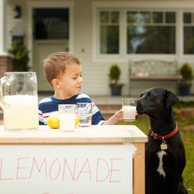 mkgalleryamp; Wine: Kids Who Get Fined for Operating Lemonade Stands Can Apply for Legal 'Ade' This Summer