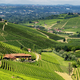 Food & Wine: 4 Must-Visit Winemakers of Barolo and Barbaresco